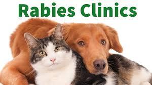 North Wildwood Rabies Clinic